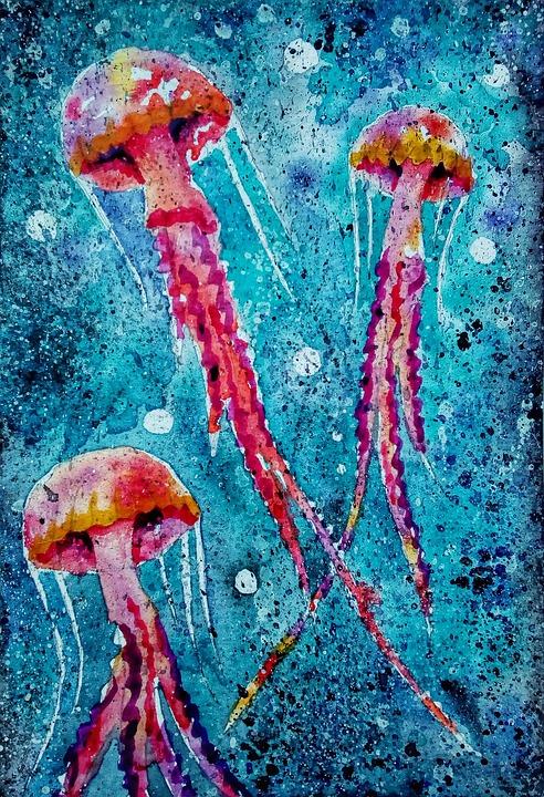 Denizanası şekil Boyama Pixabayde ücretsiz Resim
