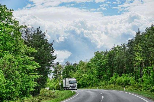 自然, 道, 木, 木材, 風景, 天国, トラック, 雲