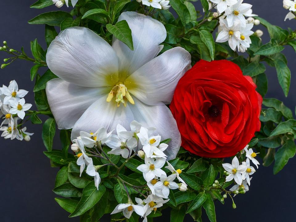Blumenarrangement Rote Ranunkel · Kostenloses Foto auf Pixabay