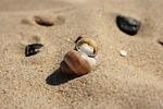 piasek, plaża, wybrzeże