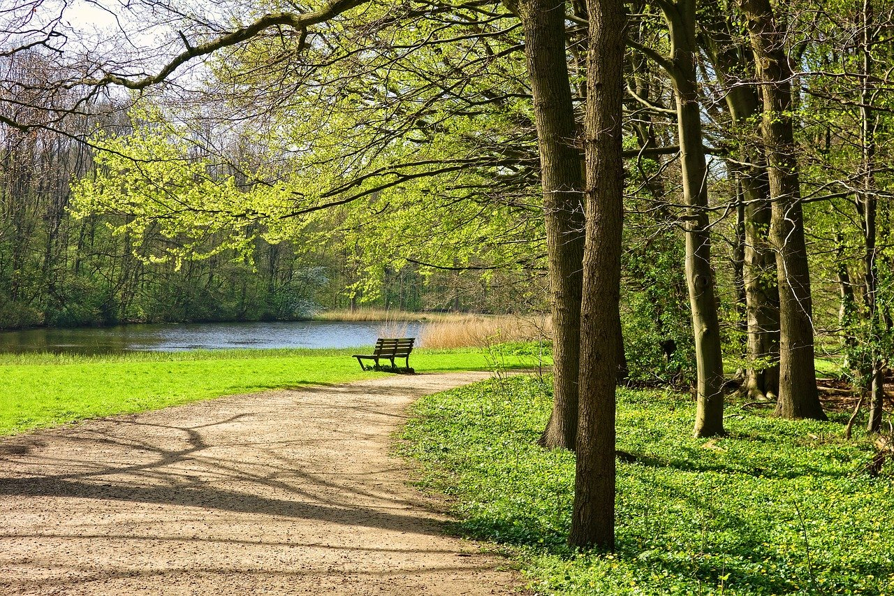 Park Path Bench - Free photo on Pixabay
