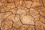 ziemia, susz, podłoża
