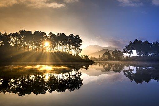 Soi Μπάλα, Η Λίμνη, Πευκοδάσος