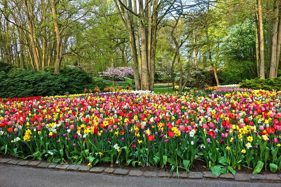 Jardín De Flores Cama · Foto gratis en Pixabay