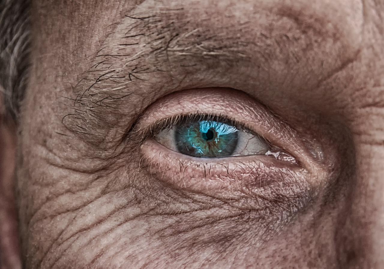 старые глаза фото гриб