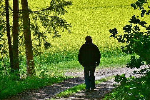 シニア, 男, ビンズイ, フィールド, 花, 収穫, 農業, 牧草地, 自然