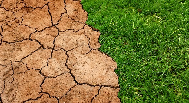 Global, Warming, Climate, Change, Soil