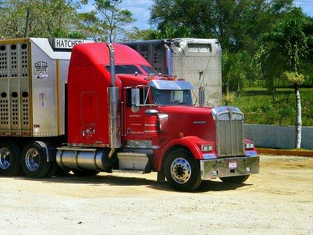 Camión, Americano, Vehículo, Transporte