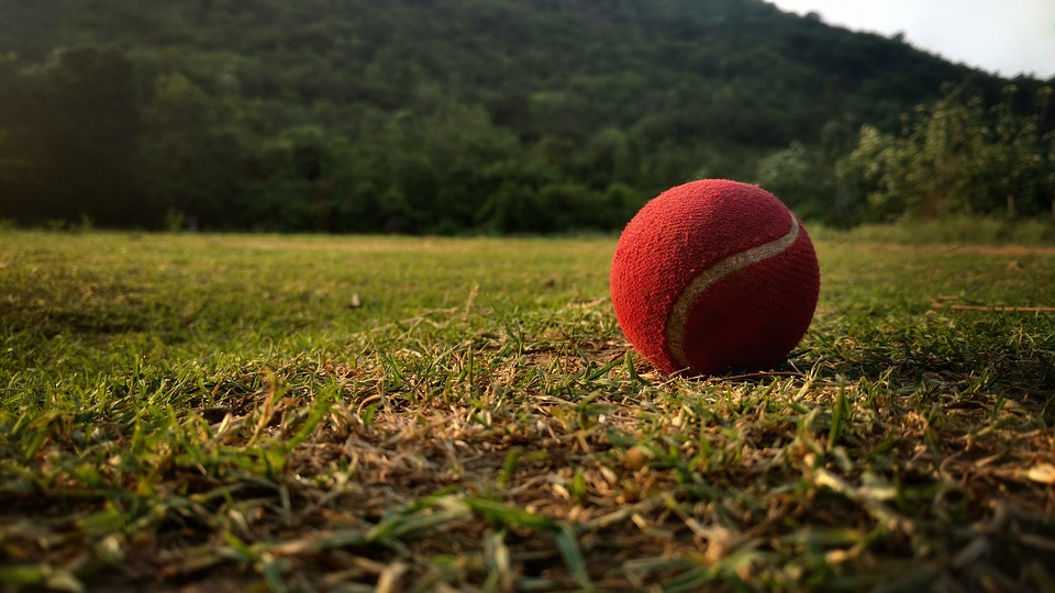 Ball, Cricket, Tennis, Red, Grass, Hill, Green, Tress