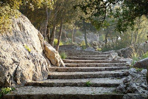 Warum dieser Blog? - Weg, Pfad, Treppen, Wandern, Natur