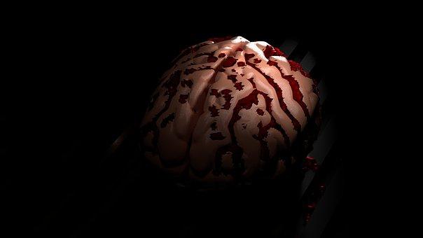 Brain, Black Mind, Human, Organ