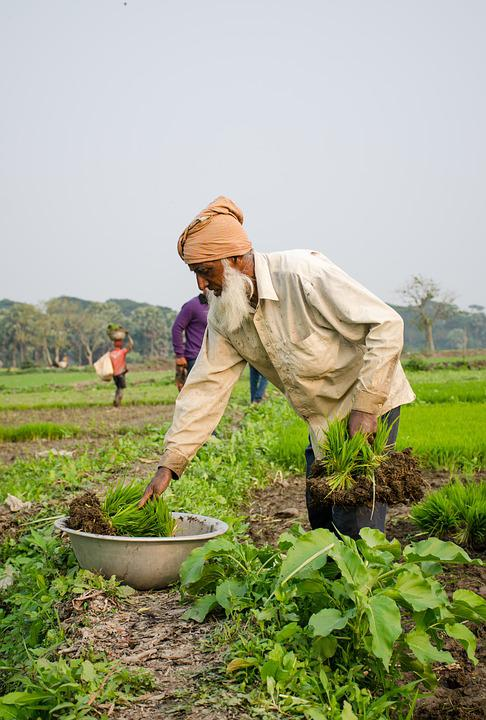 pictures of people farming