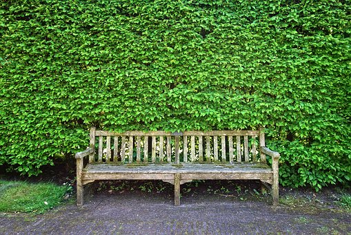 Wooden Bench, Bench, Seat, Sitting