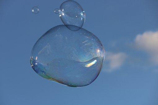 bulle sur de l'herbe