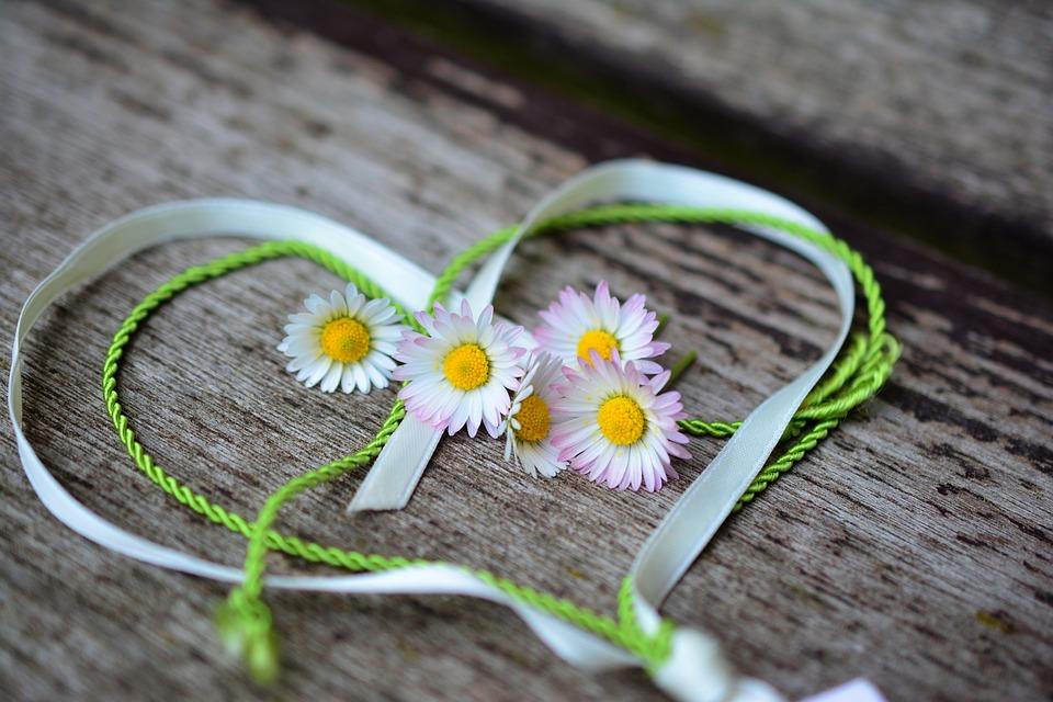 デイジー, 心, ロマンス, バレンタインデー, 愛, スプリング, ご挨拶, ハート形, 友情, シンボル