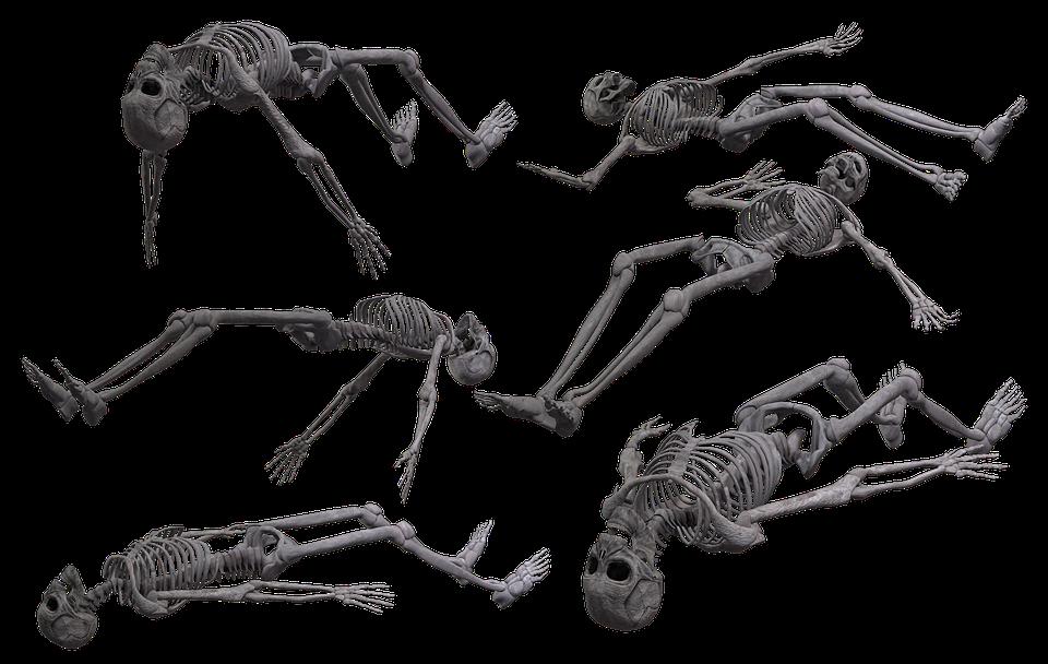 Skelett Schädel Knochen · Kostenloses Bild auf Pixabay