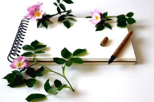 笔记本, 写, 备注, 书写工具, 施赖贝尔, 文具, 纸, 空, 本书, 日记