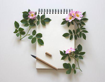 Cuaderno, Escribir, Notas