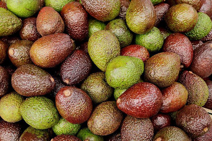 Avocados, Exotic, Fruit