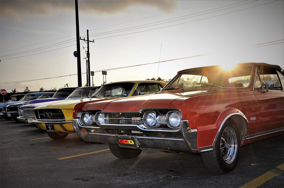 Scenic, Muscle Car Lineup, Muscle Cars, Classic Cars