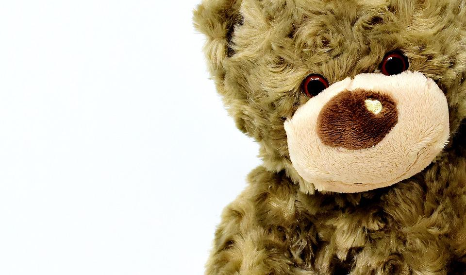 teddy-3404237_960_720.jpg