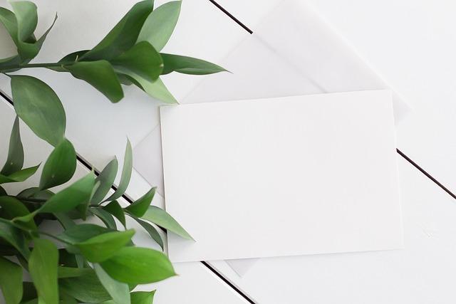 Background Leaves White Wood Free Photo On Pixabay