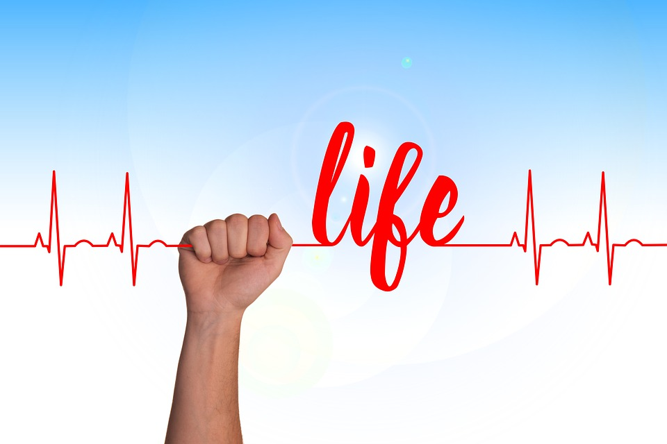 心, 曲線, ライブ, スレッド, Seidener スレッド, 健康, パルス, 周波数, ハートビート