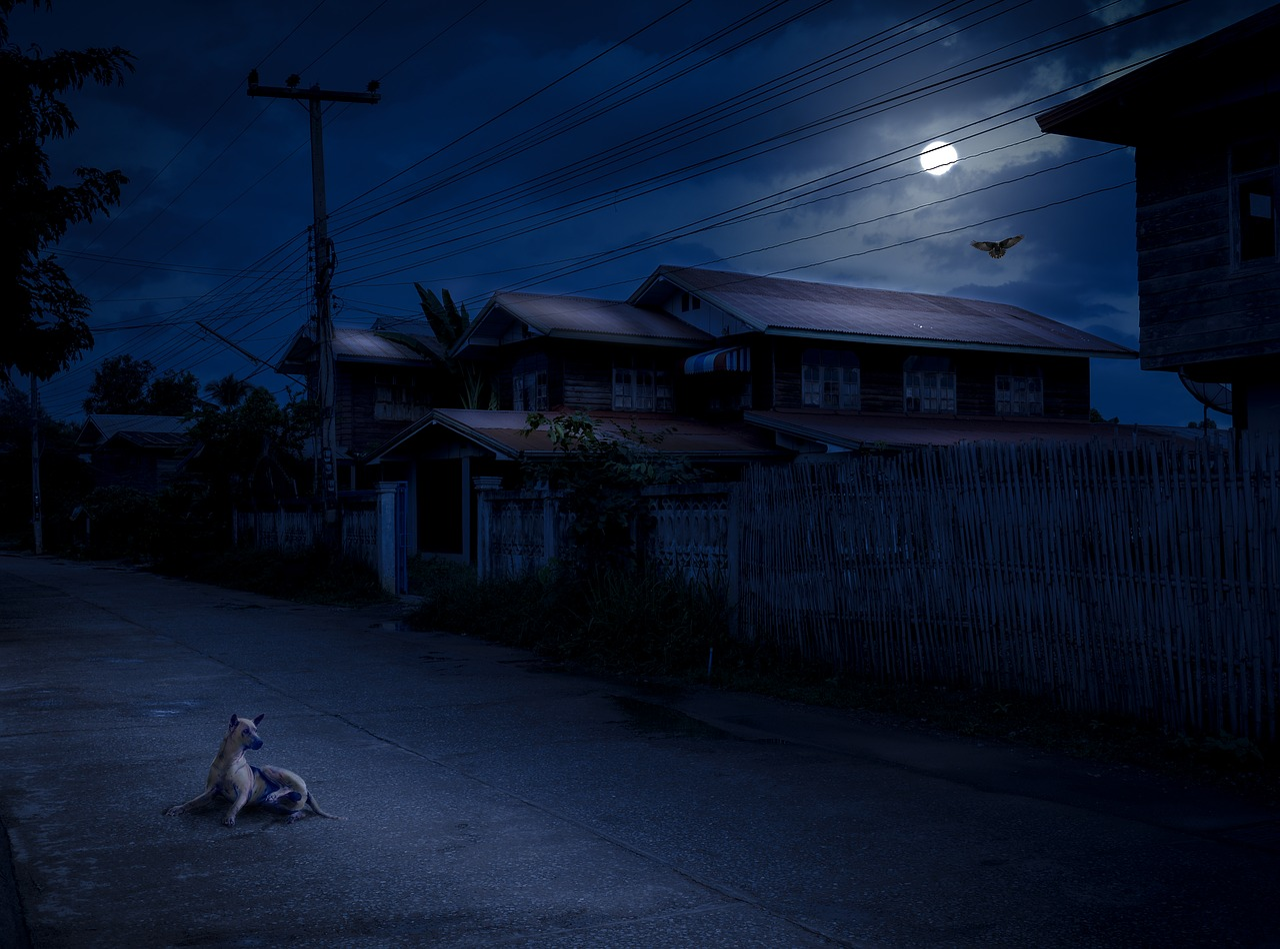 упаковке улица ночная в деревне картинки бумагу