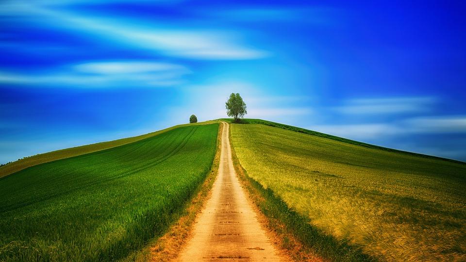 距離, 丘, フィールド, ツリー, レーン, 孤独です, 空, 風景, 気分, 青, 丘陵, 徒歩, 夏