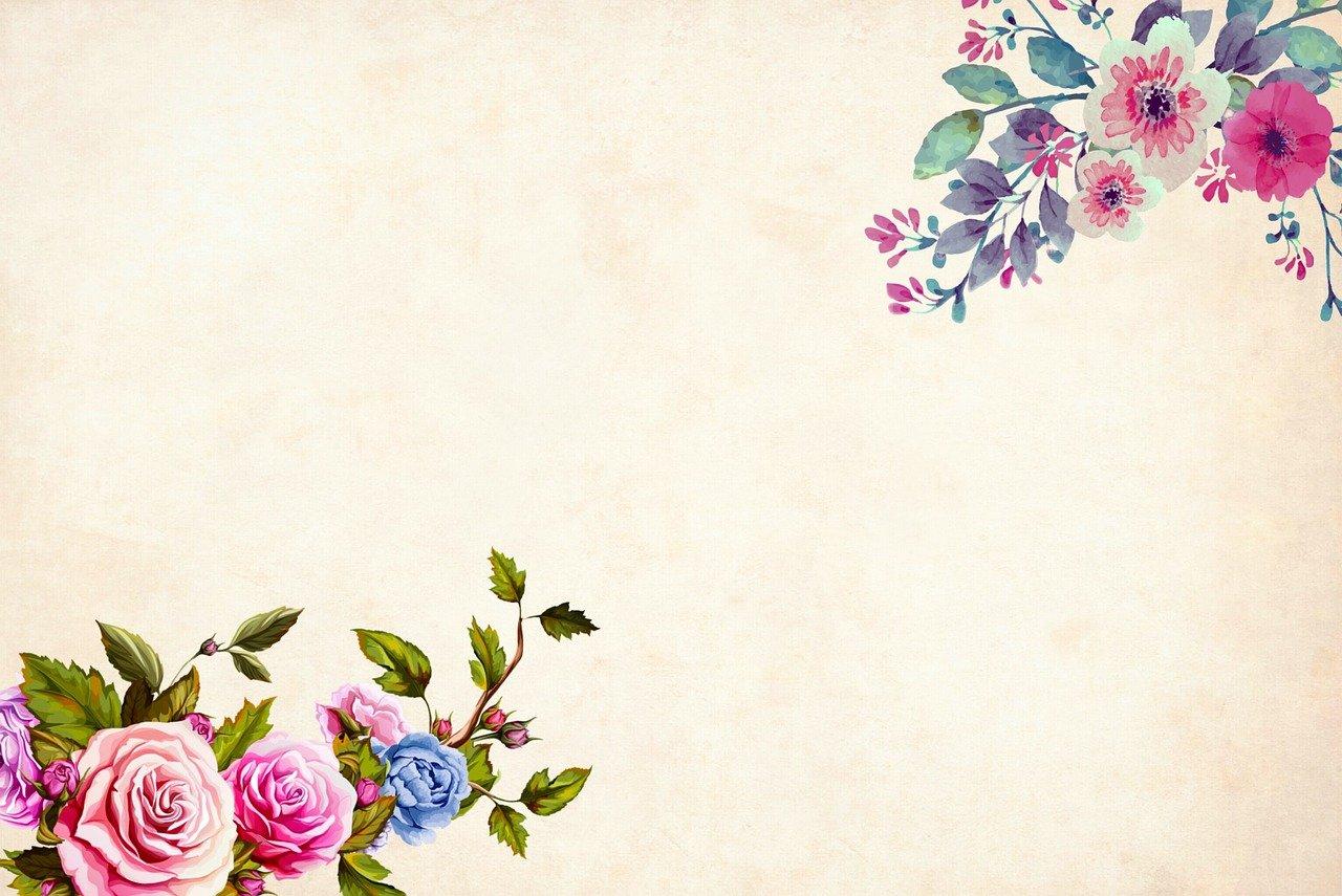 Bunga Latar Belakang Batas Taman Gambar Gratis Di Pixabay