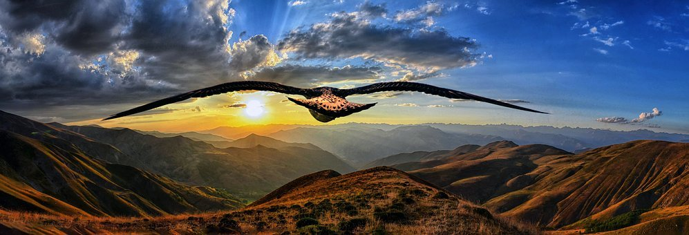 Bird, Mountains, View, Sunset, Top View