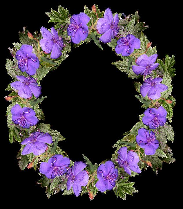 Wreath Flowers Frame 183 Free Photo On Pixabay