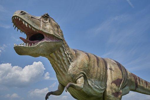 Dinosaur, Prehistoric, Carnivores