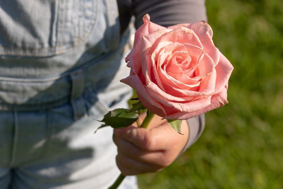 Ont Augmenté De, Main De L'Enfant, Merci, Enfant, Fleur