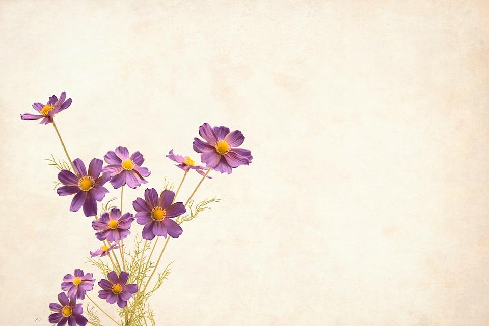 花, 花柄, 背景, 国境, 庭園のフレーム, ビンテージ, カード, アート, 結婚式, デザイン