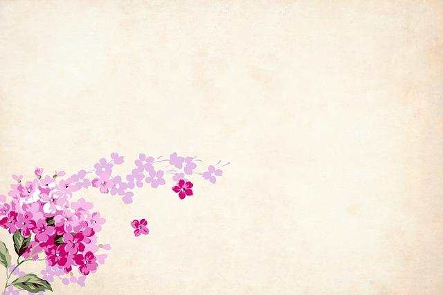 flower floral background  u00b7 free image on pixabay