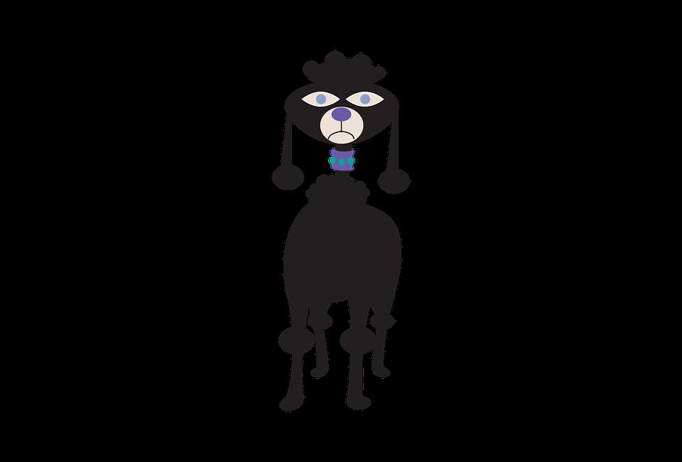 Clipart Hund Tier Kostenloses Bild Auf Pixabay