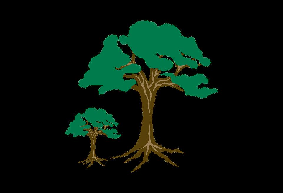 Clipart Tree Green Free Image On Pixabay