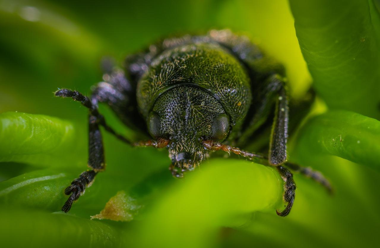 Как работает фото на гудкова в жуковском профильных подразделений