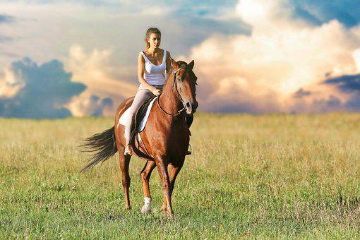 Woman, Riding, Horse, Animals, Mare
