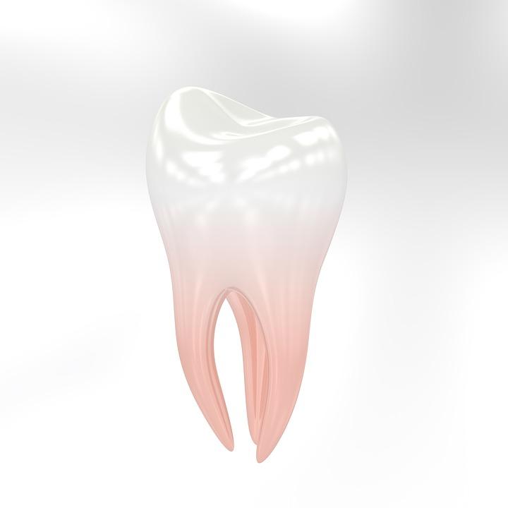 Denti Dente Dentista Ogni Tanto - Immagini gratis su Pixabay