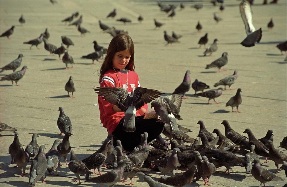 Veľké vtáky mladé dievčatá