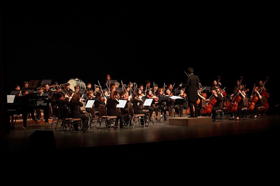 Orkiestra, Hotel Orkiestry Бечей, Filharmonia, Muzyka