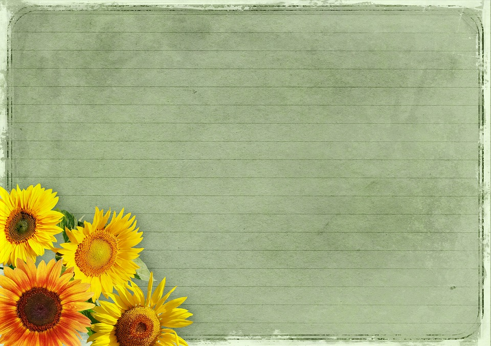 Flowers Frame Sunflower Background Image Vintage