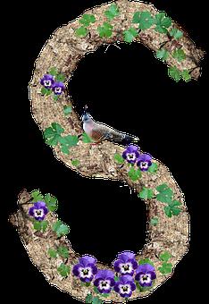 100 Free Letter S Alphabet Images Pixabay