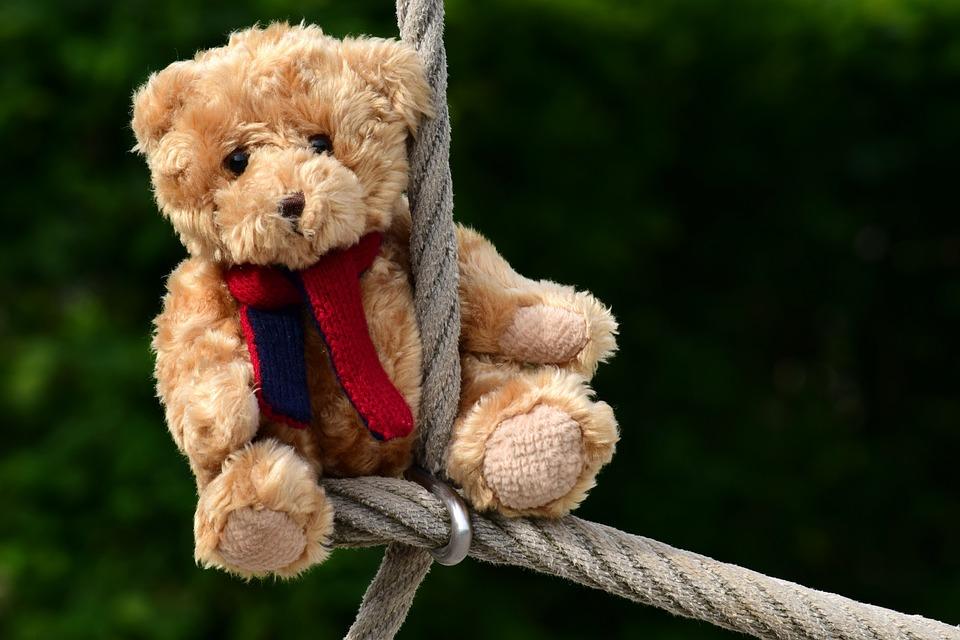 Bear, Teddy, Teddy Bear, Toys, Plush, Children Toys
