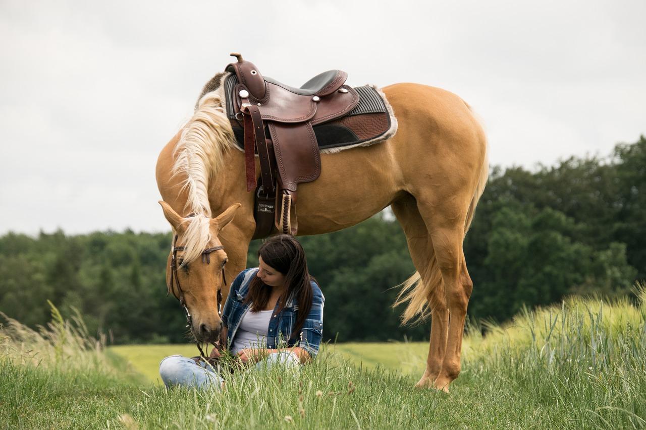 они лошадь и человек фото картинки манометрические приборы могут