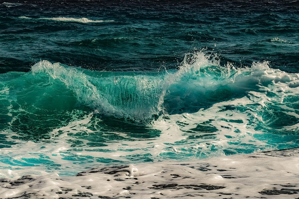 Surf, Water, Sea, Nature, Ocean, Wave, Splash