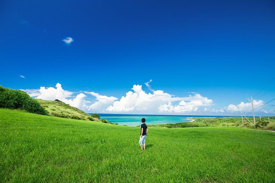 Summer, Summer Vacation, Sky, Sea, Okinawa, Meadow
