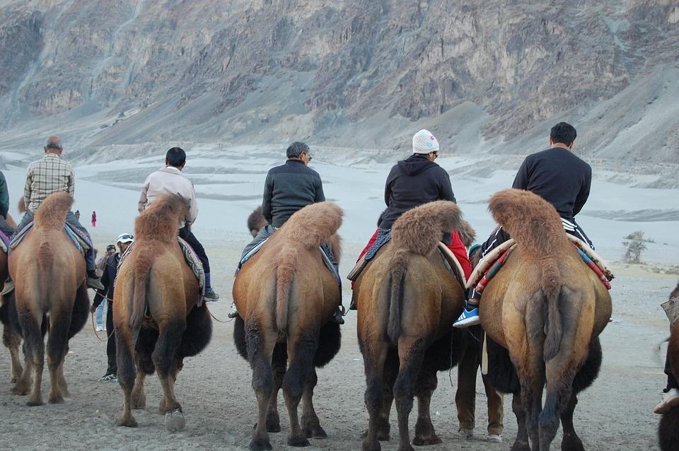 Travel guide to visit Leh